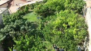 A pochi passi dalle camere il giardino segreto di agrumi e area wi-fi