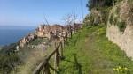 Pisciotta dal sentieri verso Castelluccio